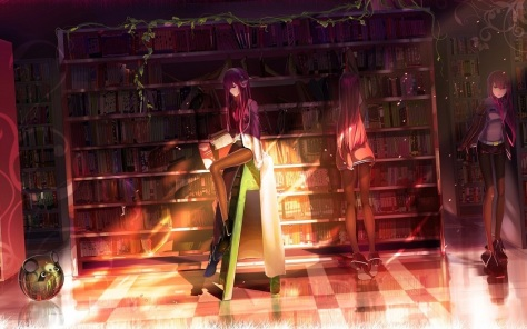 makise-kurisu-library